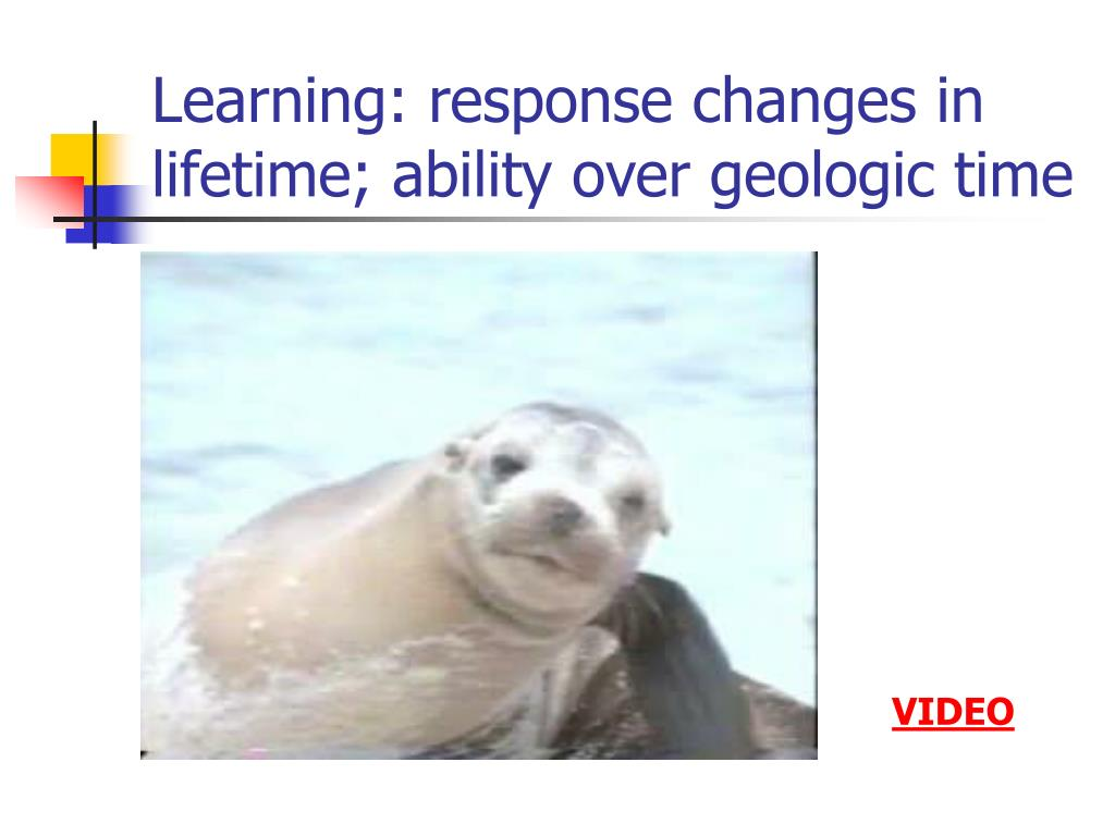 Learning: response changes in lifetime; ability over geologic time