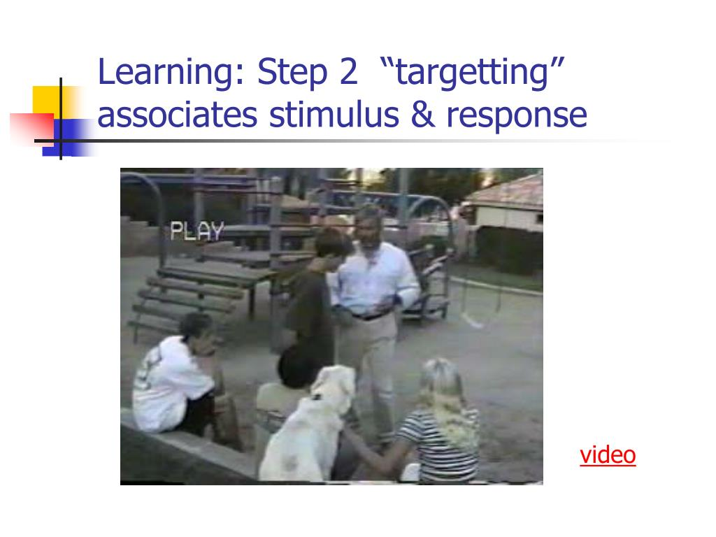 "Learning: Step 2  ""targetting""  associates stimulus & response"