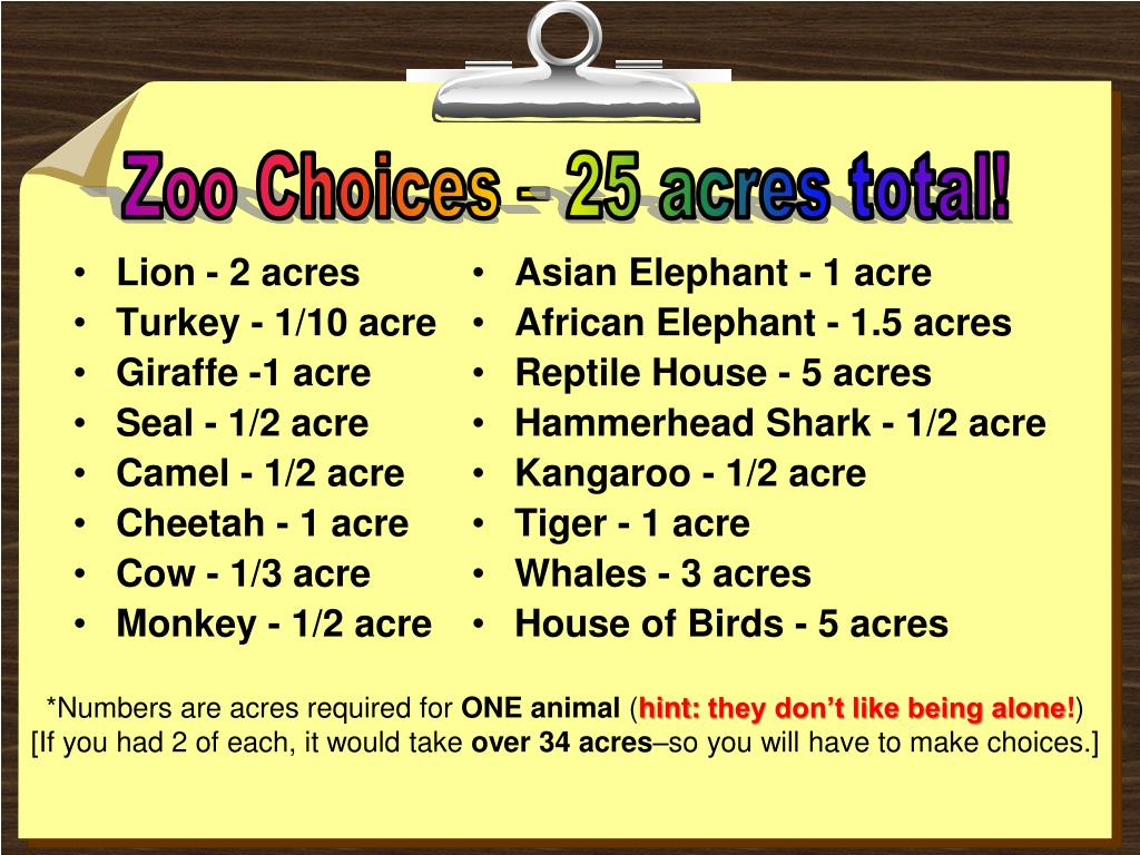 Lion - 2 acres