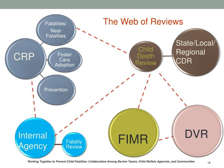 The Web of Reviews