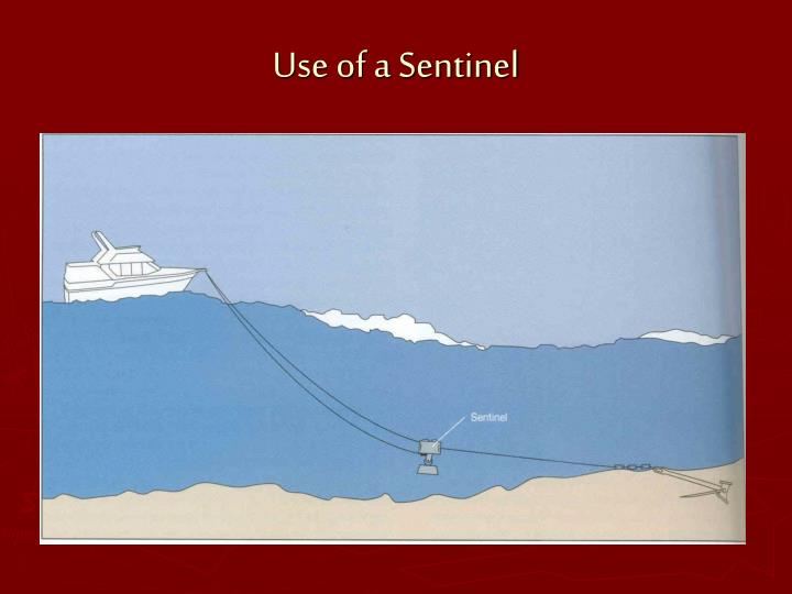 Use of a Sentinel