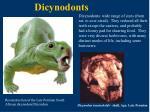 dicynodonts