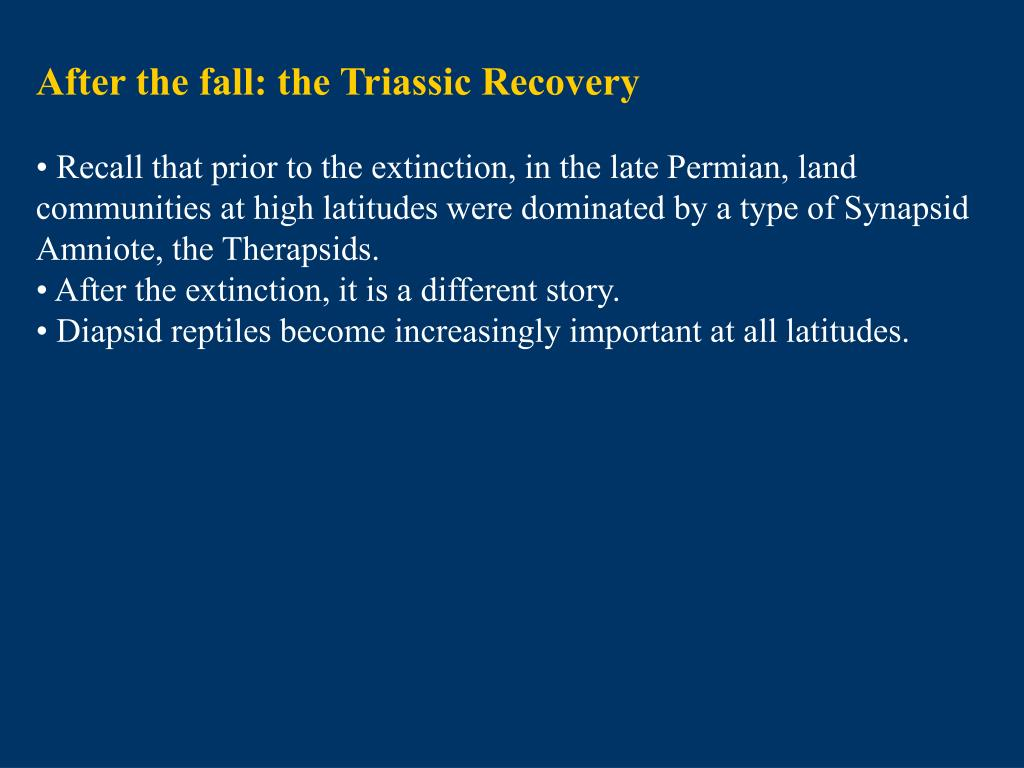 After the fall: the Triassic Recovery