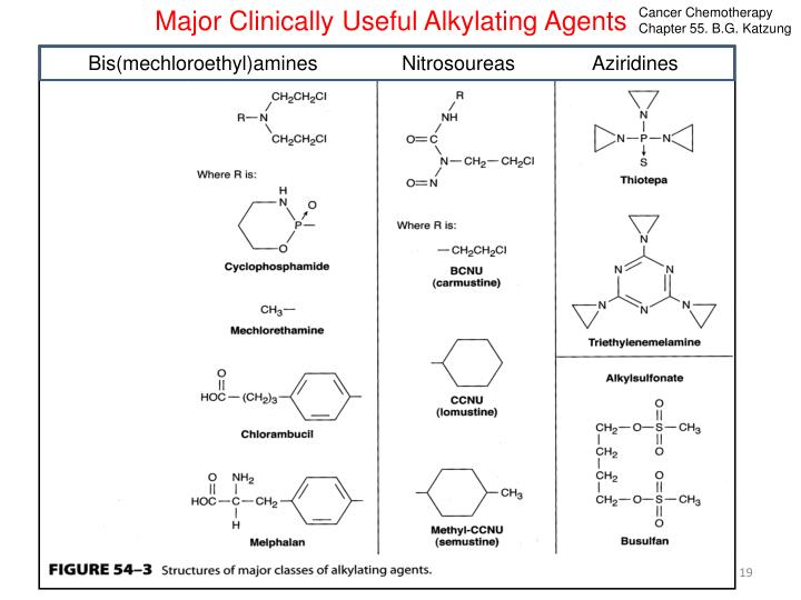 Major Clinically Useful Alkylating Agents