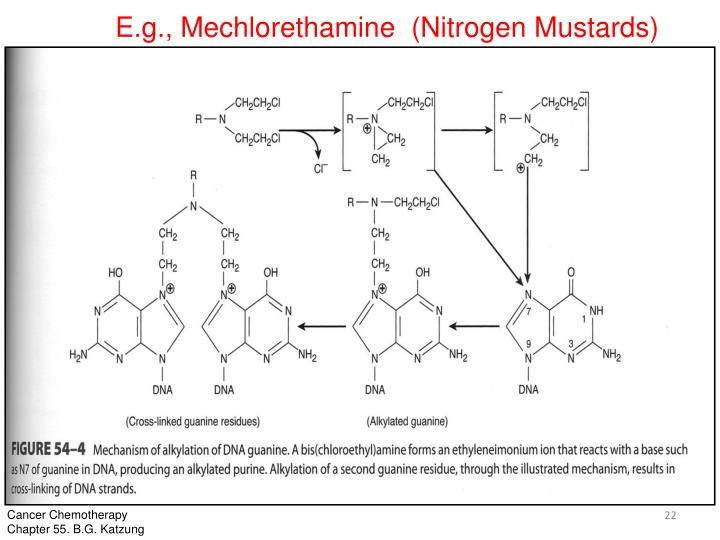 E.g., Mechlorethamine  (Nitrogen Mustards)