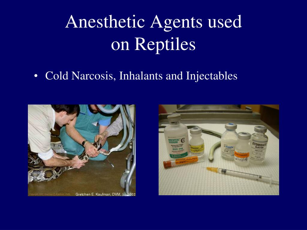 Anesthetic Agents used