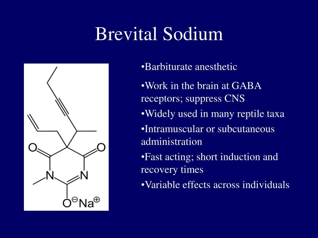 Brevital Sodium