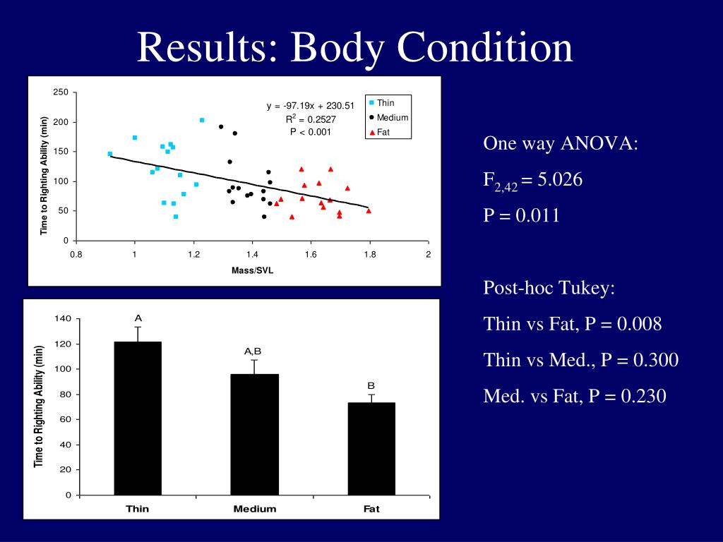 Results: Body Condition