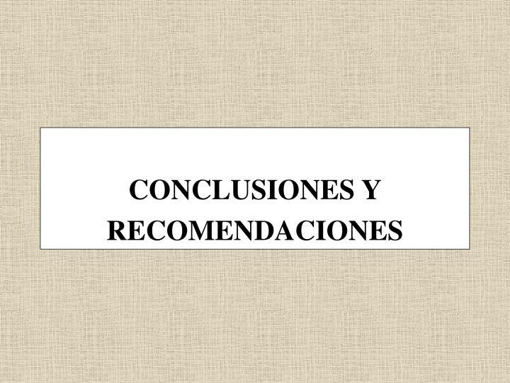 CONCLUSIONES Y