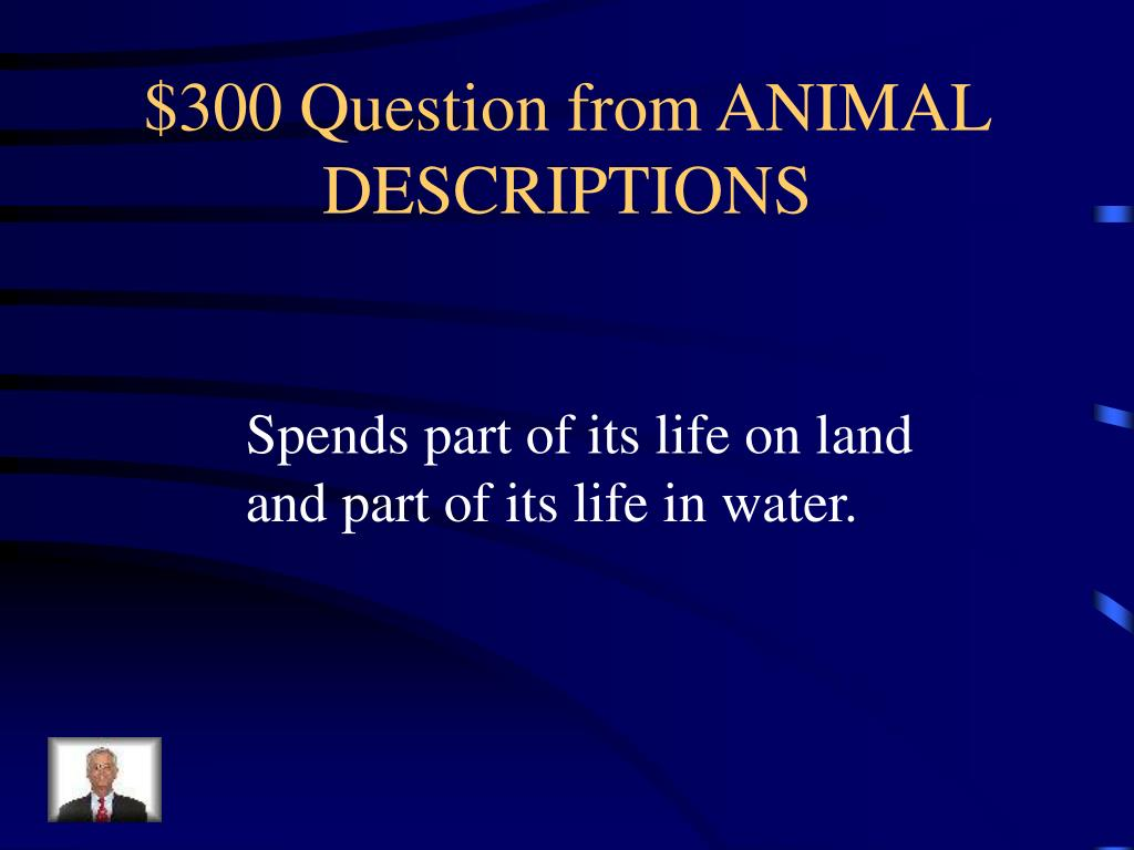 $300 Question from ANIMAL DESCRIPTIONS