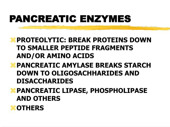 PANCREATIC ENZYMES