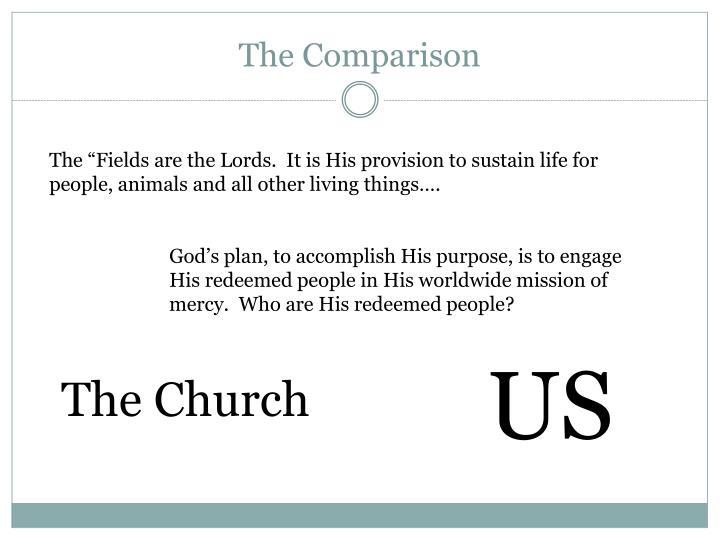 The Comparison