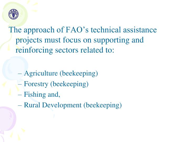 The approach of FAO's technical assistance projects must focus on supporting and reinforcing sectors related to: