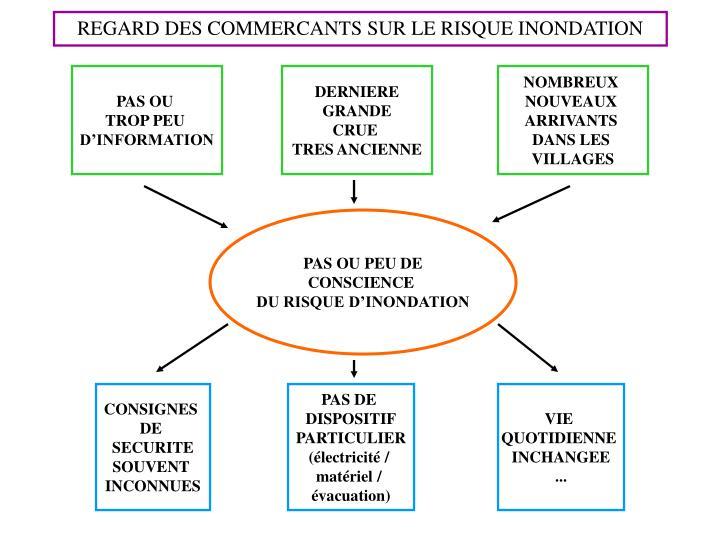 REGARD DES COMMERCANTS SUR LE RISQUE INONDATION