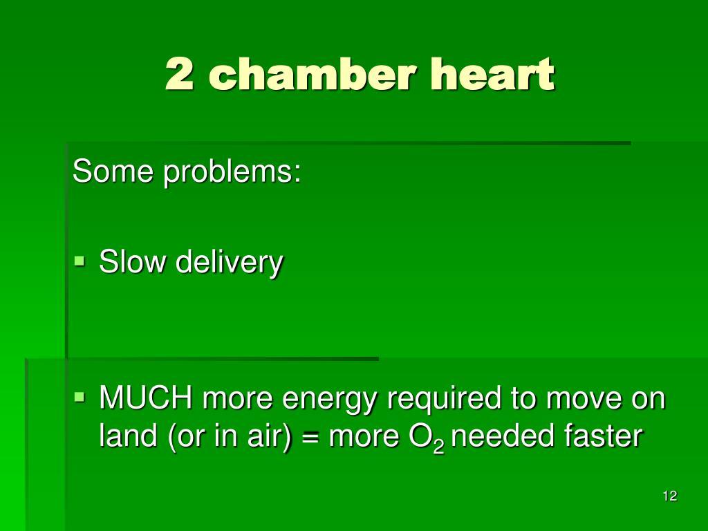 2 chamber heart