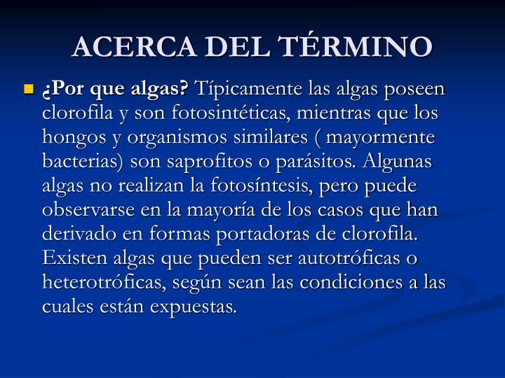 ACERCA DEL TÉRMINO
