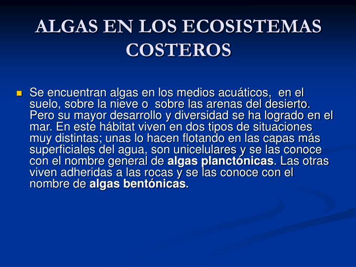 ALGAS EN LOS ECOSISTEMAS COSTEROS