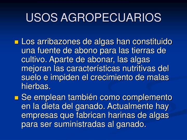 USOS AGROPECUARIOS