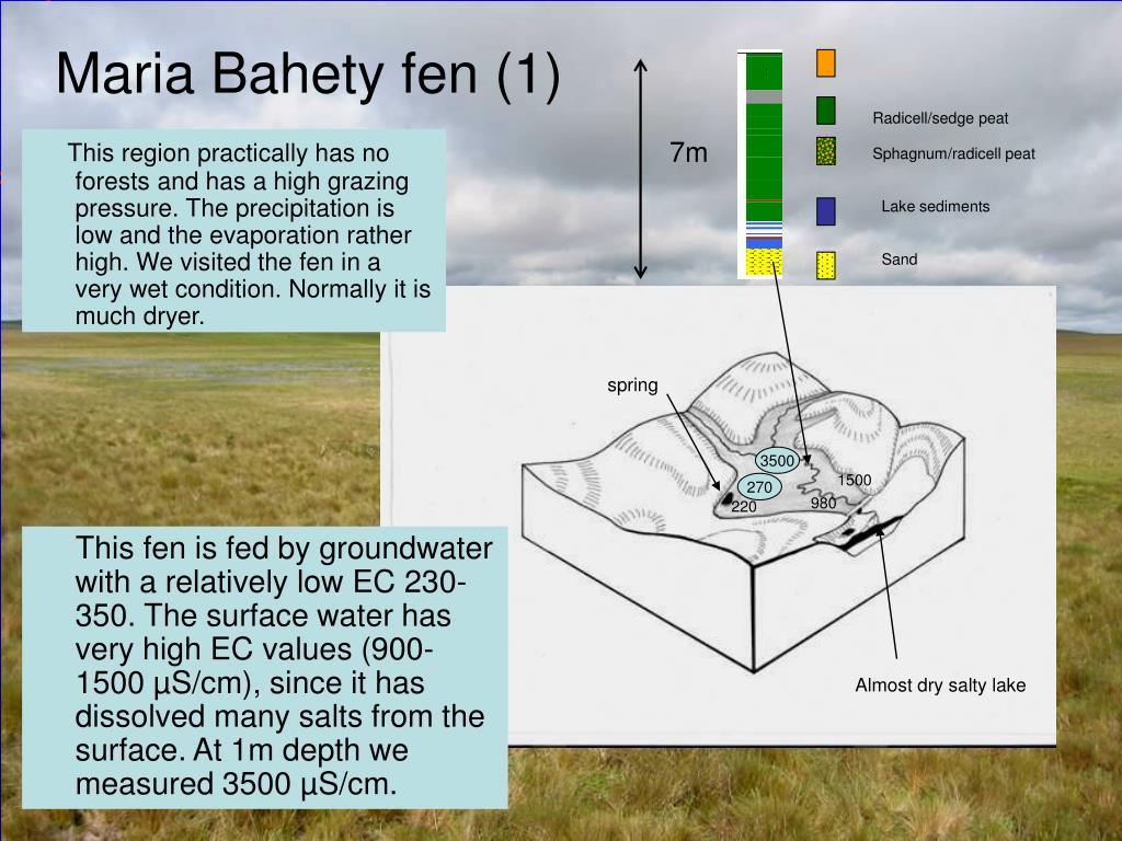 Maria Bahety fen (1)
