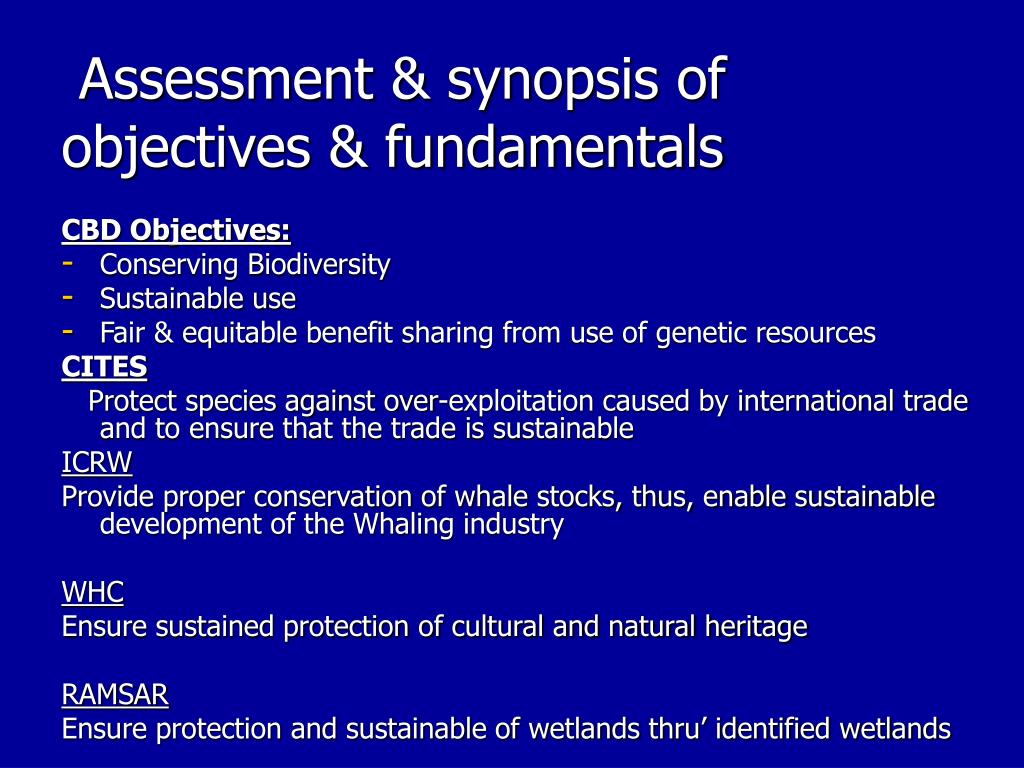 Assessment & synopsis of objectives & fundamentals