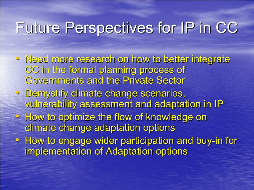 Future Perspectives for IP in CC
