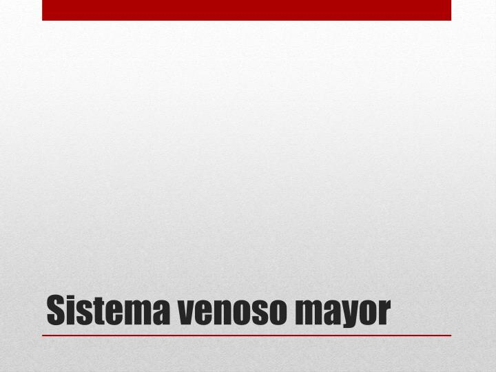 Sistema venoso mayor