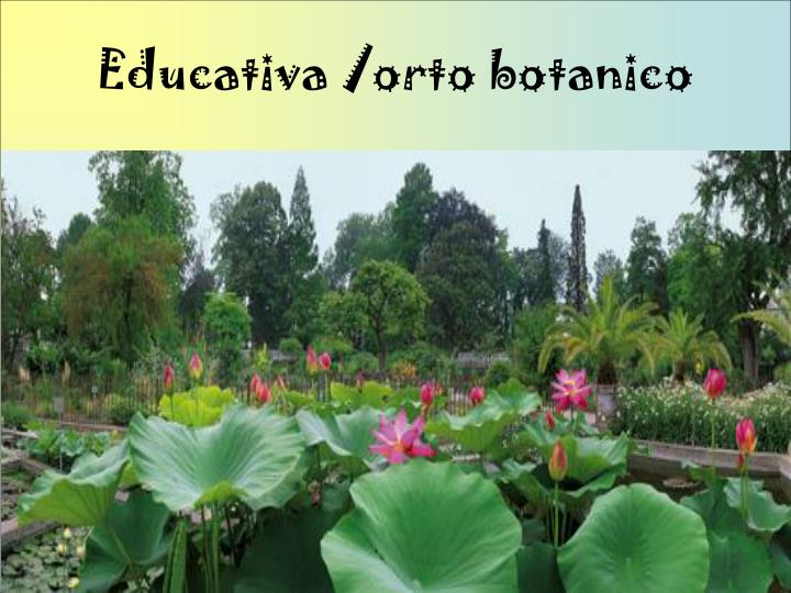 Educativa /orto botanico