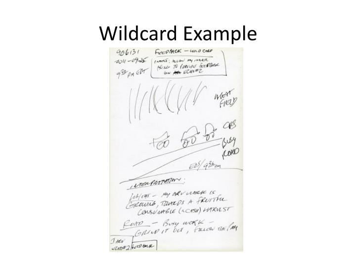 Wildcard Example