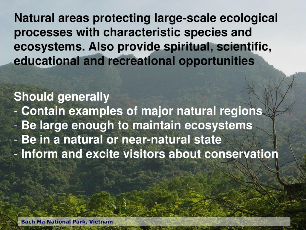 Natural areas protecting large-scale ecological processes with characteristic species and ecosystems. Also provide spiritual, scientific, educational and recreational opportunities