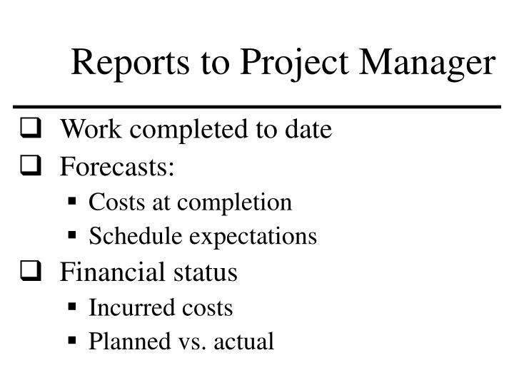 Reports to Project Manager