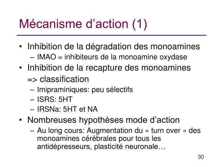 Mécanisme d'action (1)