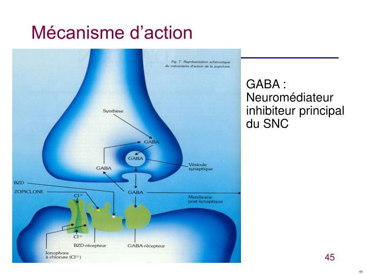 Mécanisme d'action