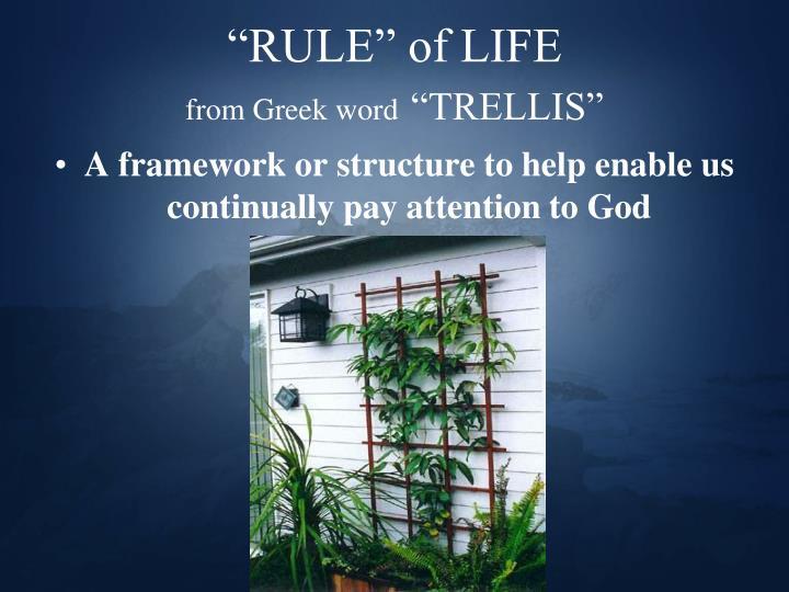 """RULE"" of LIFE"