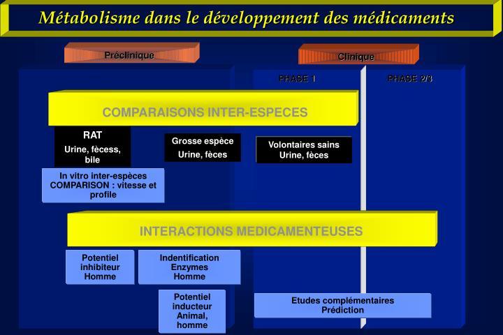 Métabolisme dans le développement des médicaments