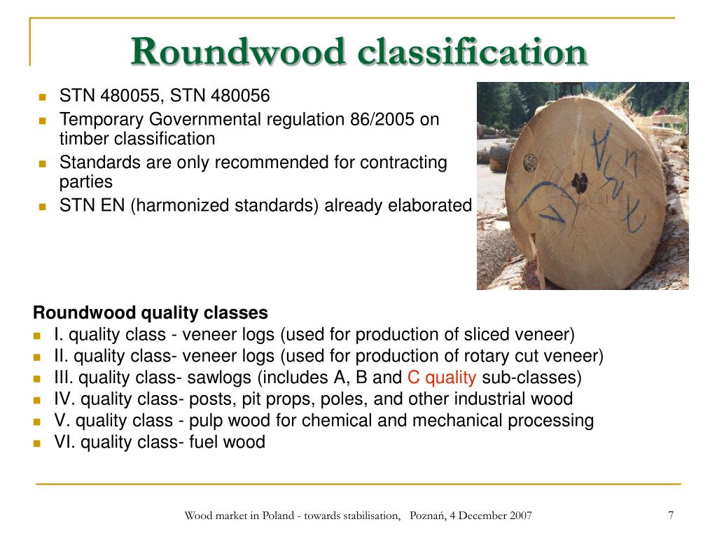Roundwood classification