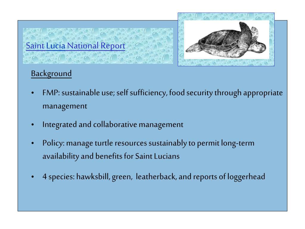 saint lucia national report