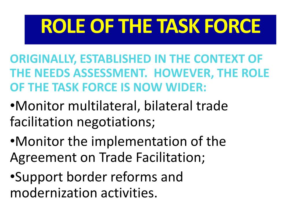 ORIGINALLY, ESTABLISHED IN THE CONTEXT OF THE NEEDS ASSESSMENT.  HOWEVER, THE ROLE OF THE TASK FORCE IS NOW WIDER: