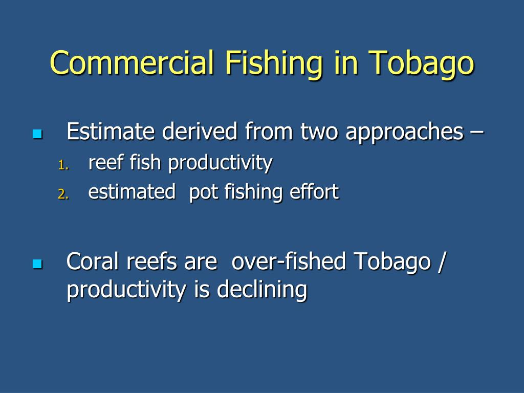 Commercial Fishing in Tobago