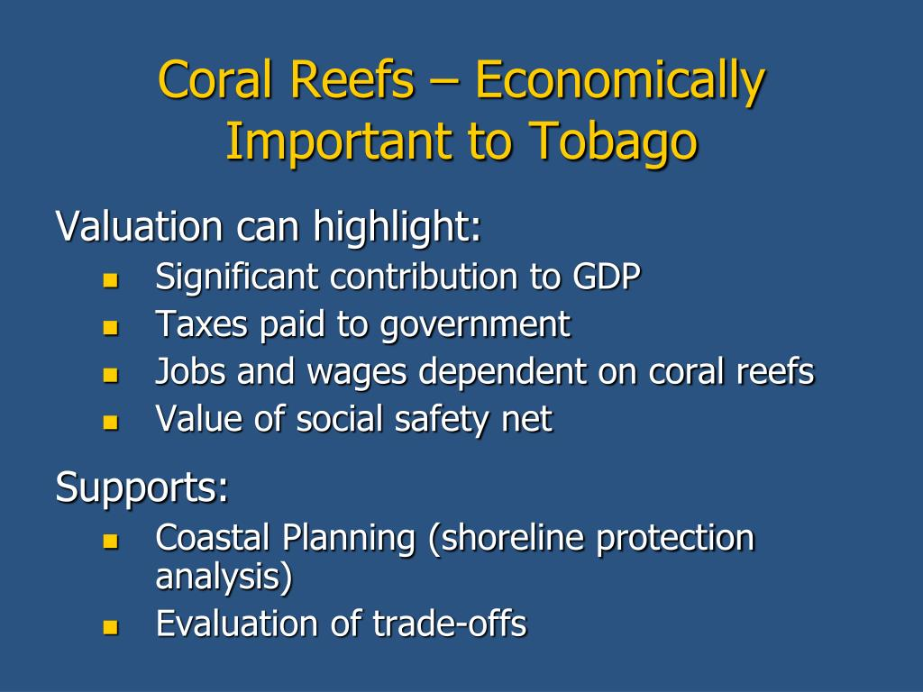 Coral Reefs – Economically Important to Tobago