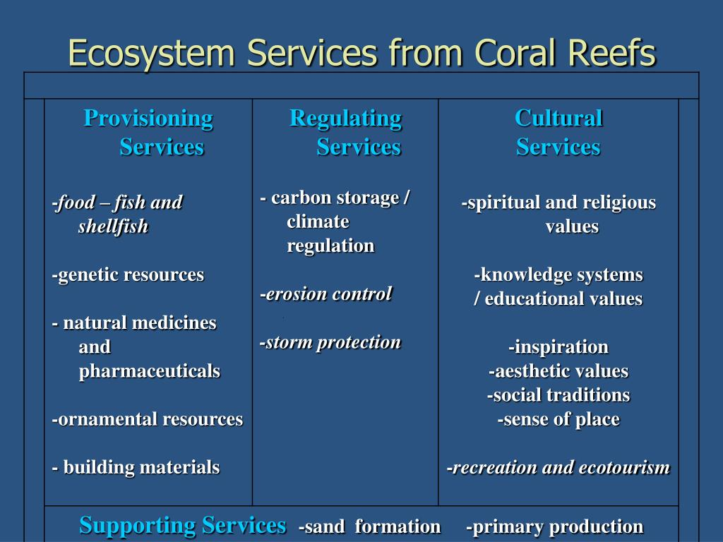Ecosystem Services from Coral Reefs
