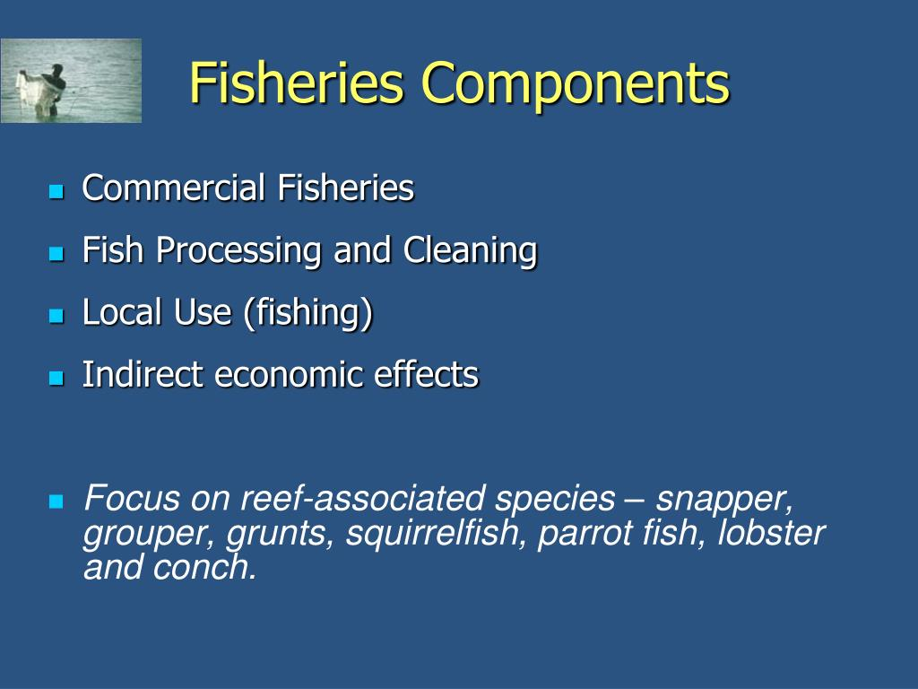 Fisheries Components
