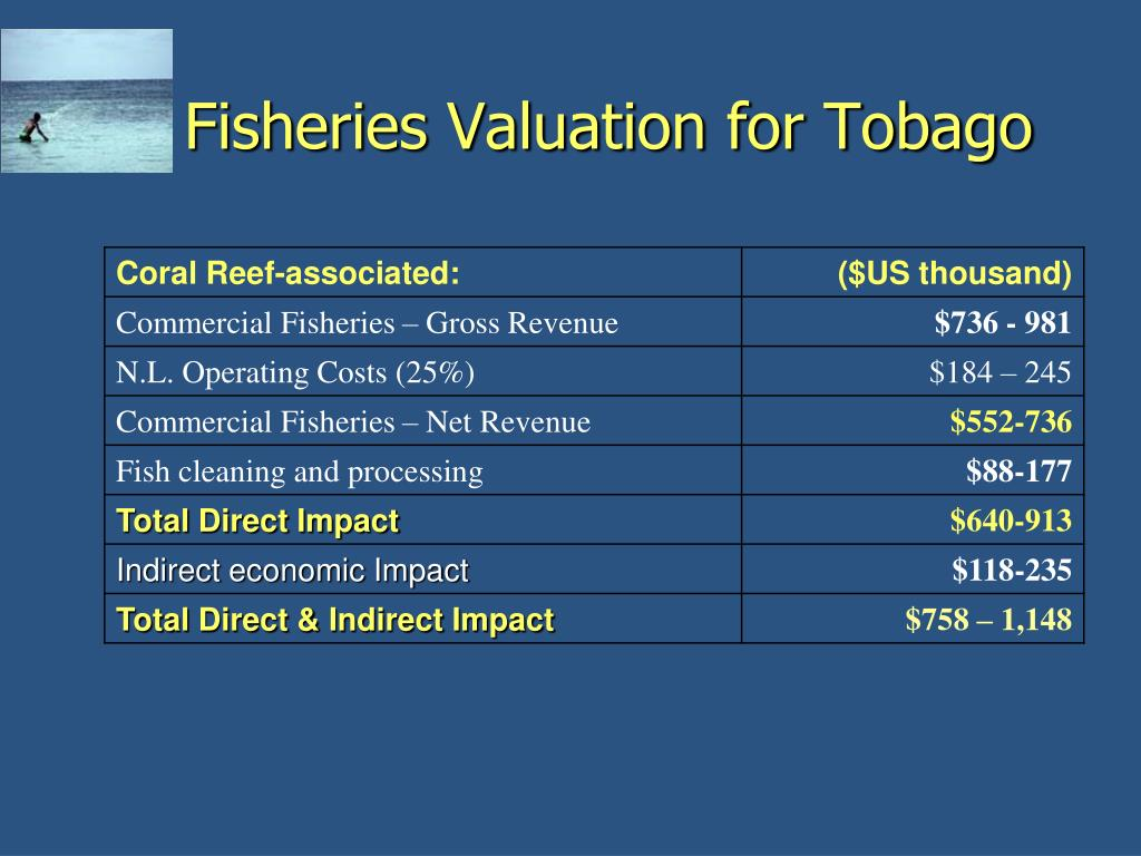 Fisheries Valuation for Tobago