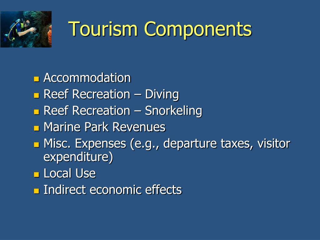 Tourism Components