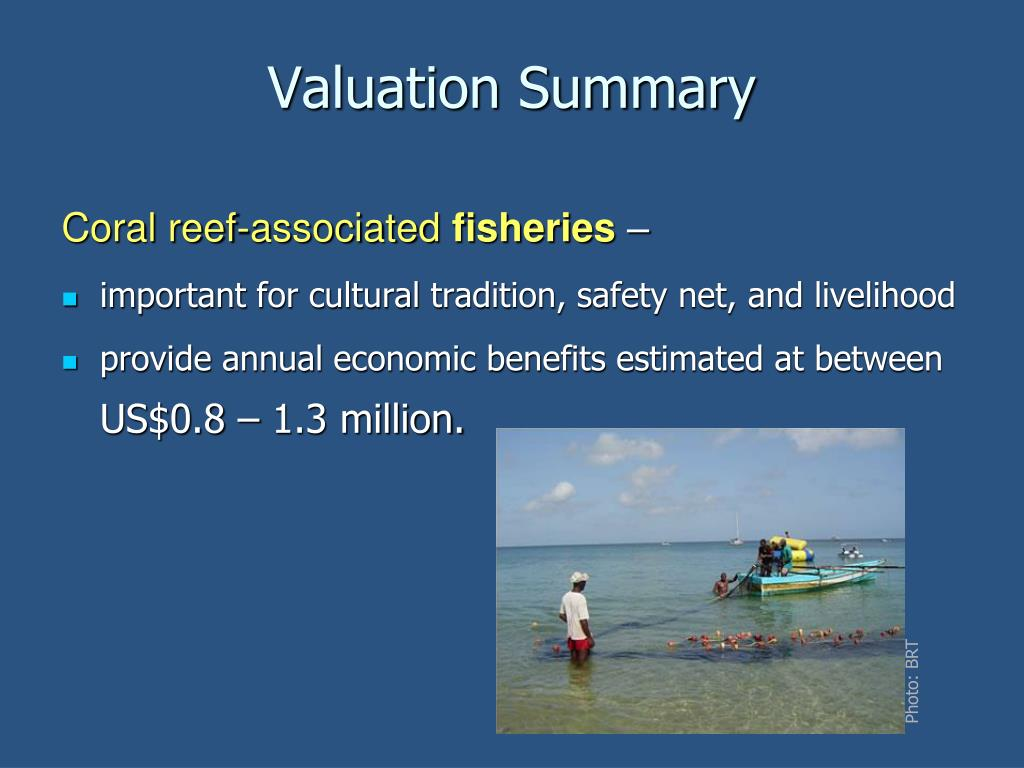 Valuation Summary