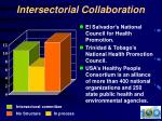 intersectorial collaboration