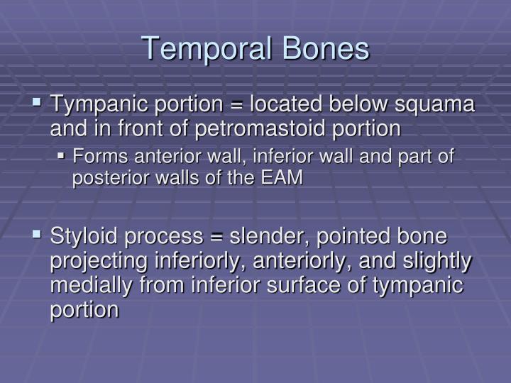 Temporal Bones