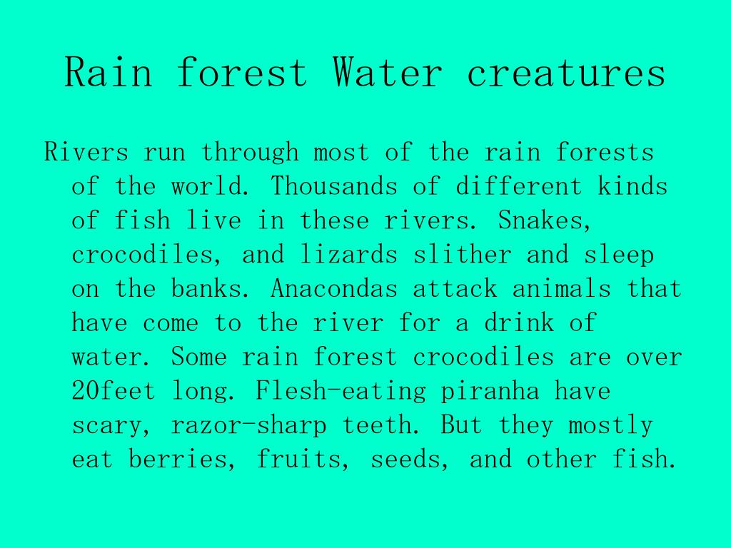 Rain forest Water creatures
