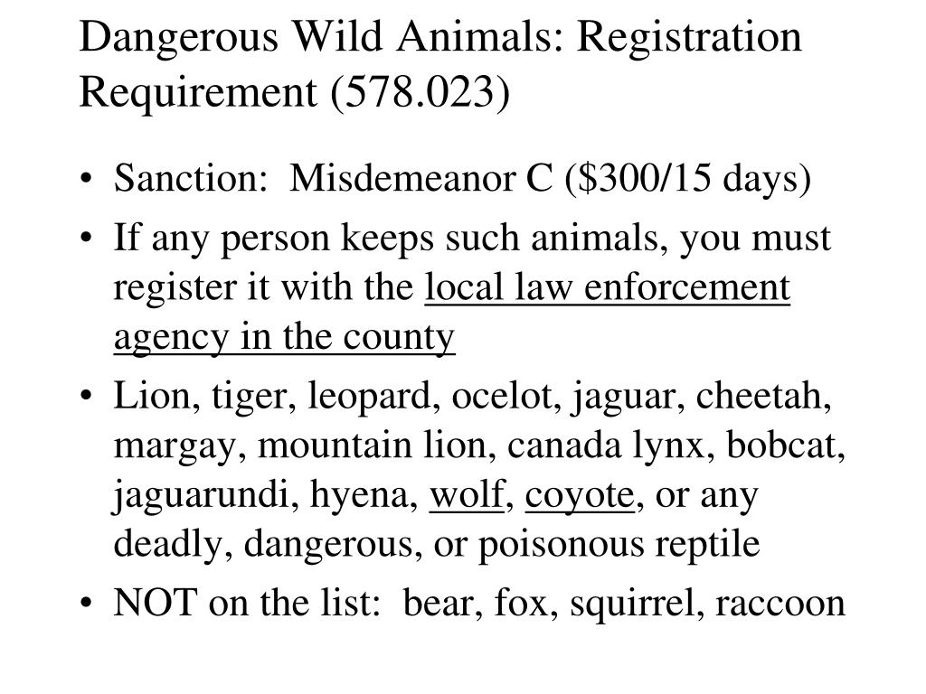 Dangerous Wild Animals: Registration Requirement (578.023)
