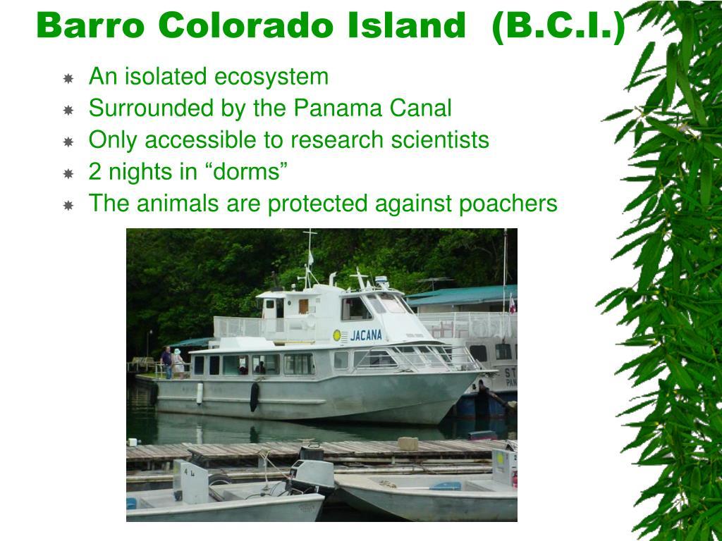 Barro Colorado Island  (B.C.I.)