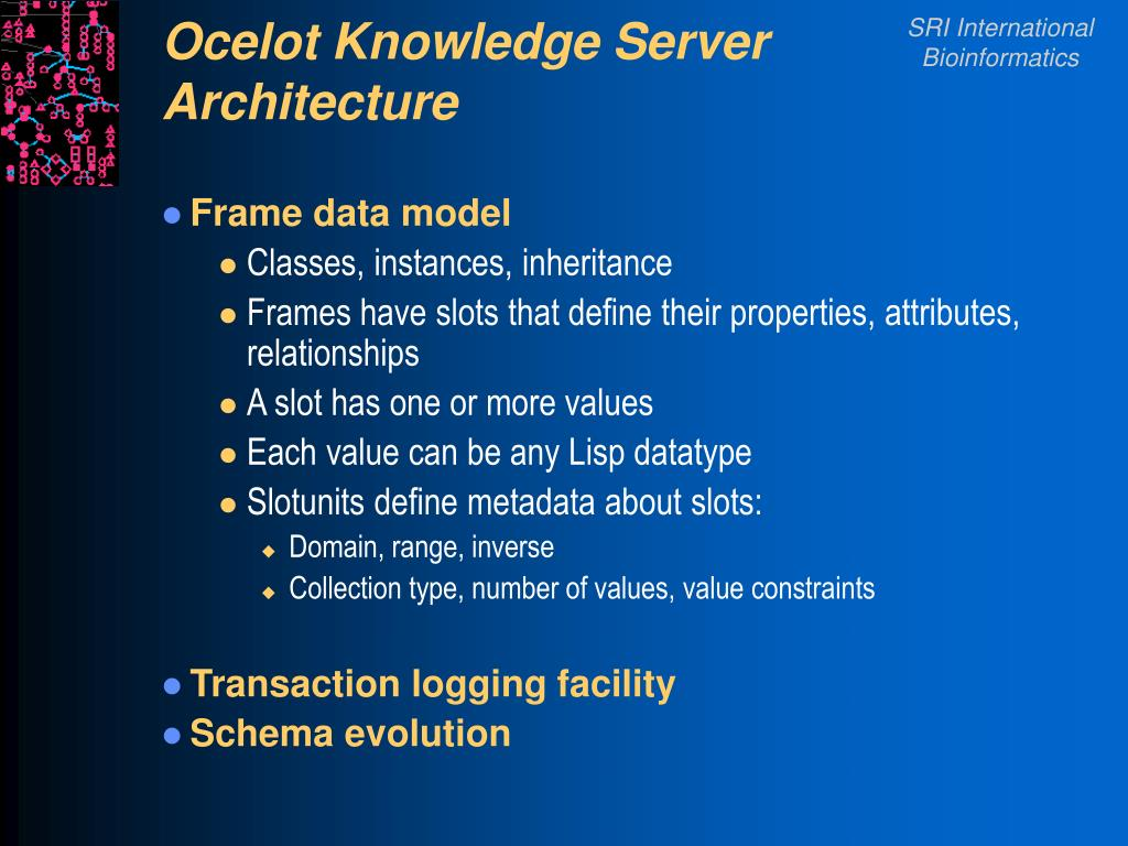 Ocelot Knowledge Server